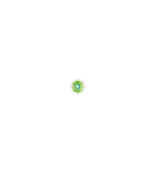 LULUBELLE (SPIGA) - LK210PU